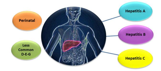 hepatit belirtileri
