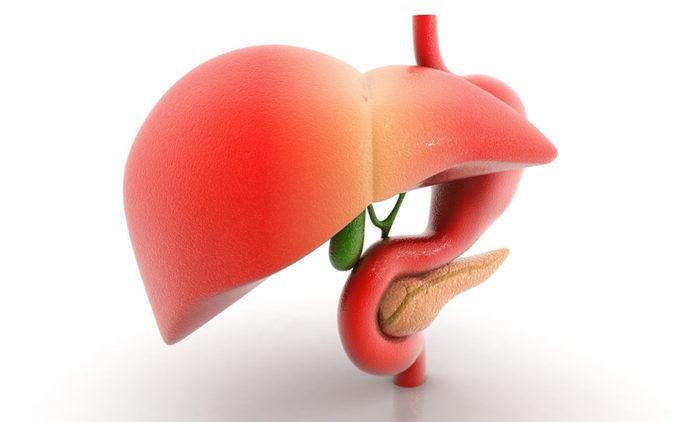 karaciğer büyümesi nedir