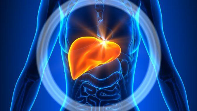karaciğer şişme sebepleri