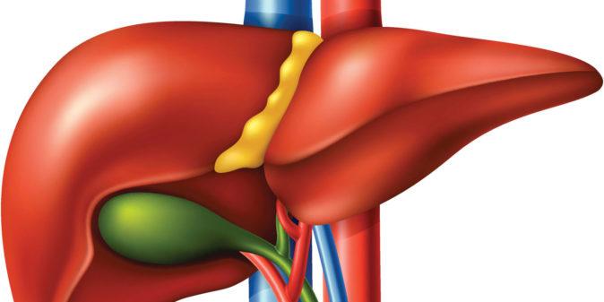 Karaciğer Yağlanması Çözümleri