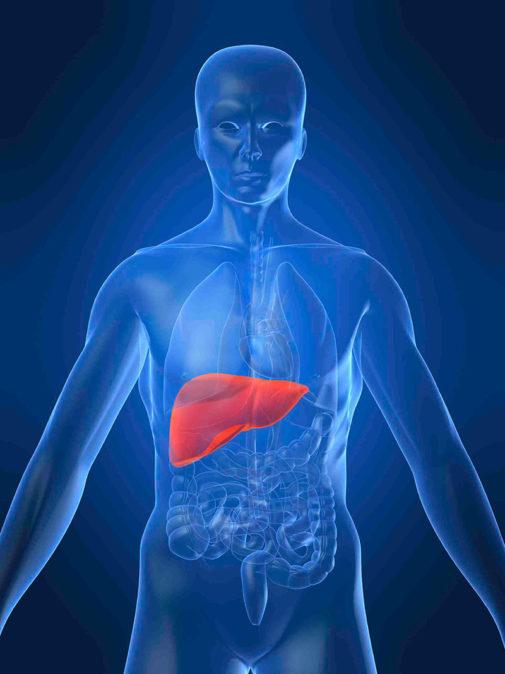 Karaciğerde kitle